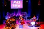 jazz–nol_jrome-lelard-trio-5